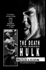 Nonton Film The Death of the Incredible Hulk (1990) Subtitle Indonesia Streaming Movie Download
