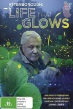 Nonton Film Attenborough's Life That Glows (2016) Subtitle Indonesia Streaming Movie Download