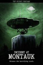 Nonton Film Incident at Montauk (2019) Subtitle Indonesia Streaming Movie Download