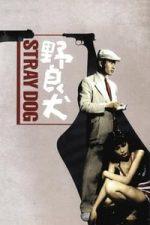 Nonton Film Stray Dog (1949) Subtitle Indonesia Streaming Movie Download