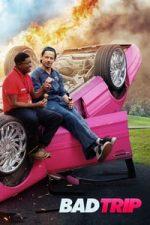 Nonton Film Bad Trip (2020) Subtitle Indonesia Streaming Movie Download