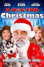 Nonton Film A Dog for Christmas (2015) Subtitle Indonesia Streaming Movie Download