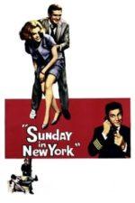 Nonton Film Sunday in New York (1963) Subtitle Indonesia Streaming Movie Download