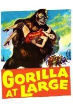 Nonton Film Gorilla at Large (1954) Subtitle Indonesia Streaming Movie Download