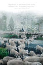 Nonton Film Sweetgrass (2009) Subtitle Indonesia Streaming Movie Download