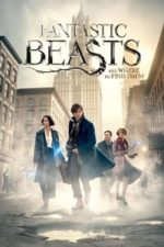 Nonton Film Fantastic Beasts and Where to Find Them (2016) Subtitle Indonesia Streaming Movie Download