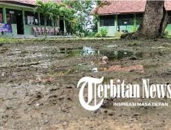 Selain Gedungnya Membahayakan, Halaman SDN Majengan I Sampang Mirip Sawah