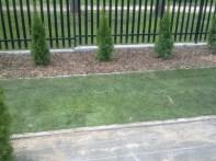 ułożony trawnik