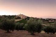 Dolce è la sera - panorama sulle colline marchigiane Spinetoli Ascoli Piceno
