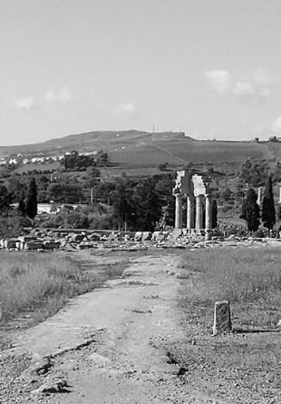 046 - Valle dei Templi Agrigento