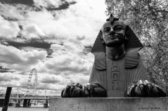 One of two sphinxes at the base of Cleopatra's Needle