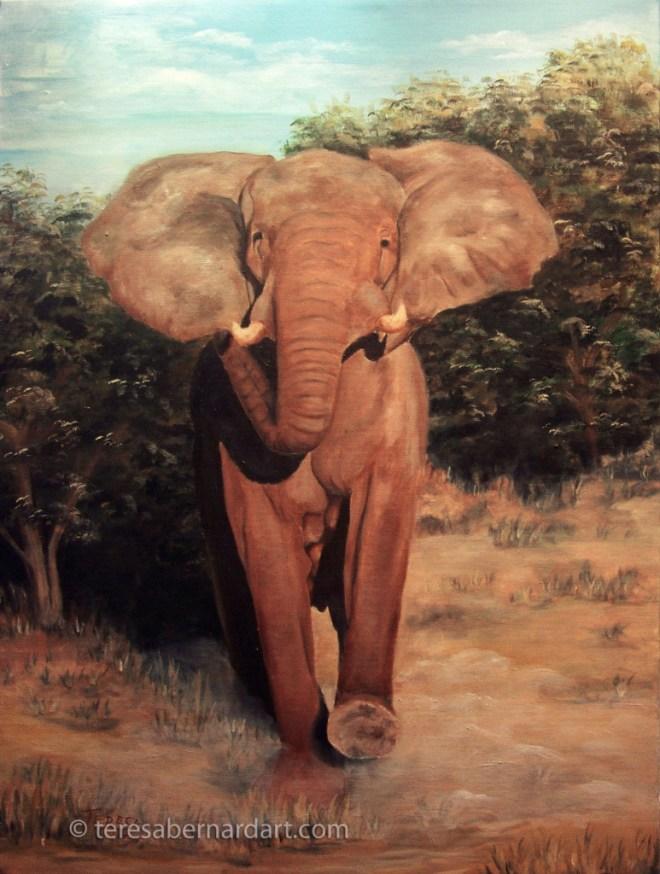 african elephant wildlife painting