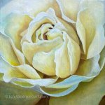 close up rose flower painting