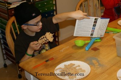 If your are studying dinosaurs or are just looking for an activity for a rainy day, this is a fun project!!