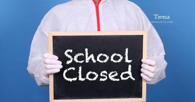 Pandemic Schooling vs Homeschooling