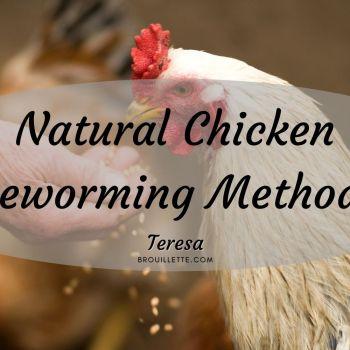Natural Chicken Deworming Methods