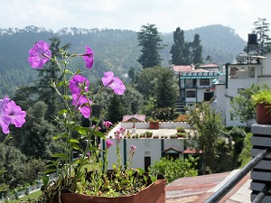 From the balcony of our hotel Ski and Snow, Kausani, Himalayan India