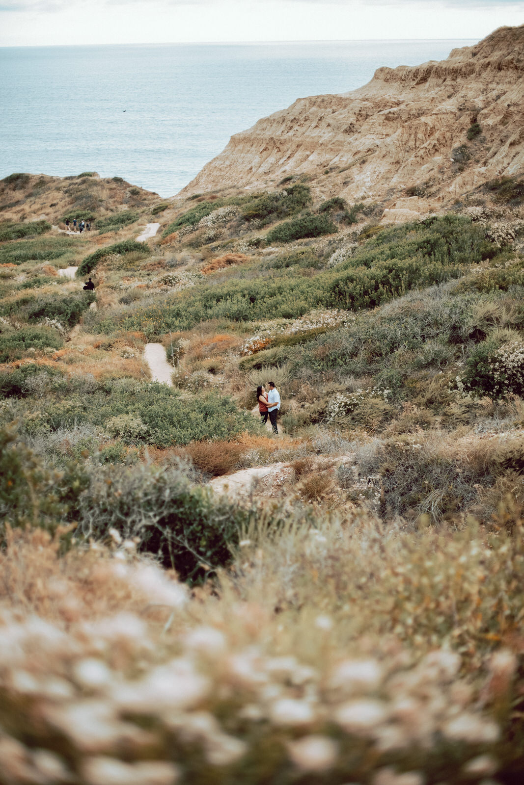 A couple holding hands as they walk through Torrey Pines Nature Reserve