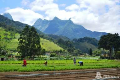 Para o agricultor familiar, a Chamada Pública para a Merenda Escolar será nova fonte de renda