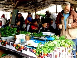 Estudantes participam de visita guiada pela Feira Orgânica, com o engenheiro agrônomo Beto Selig