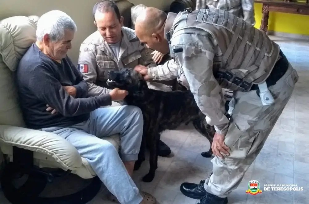 Terapia com cães ajuda idosos e crianças de Teresópolis