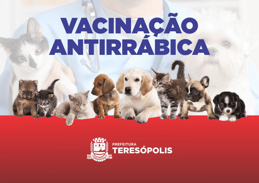 Vacinação de cães e gatos contra raiva animal segue em bairros e localidades de Teresópolis