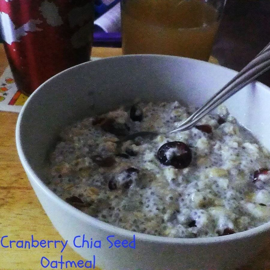 cranberry chia seed oatmeal