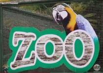 A fazendinha e o Zoo do Thermas de Olimpia