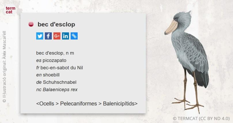 bec_d-esclop