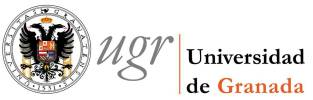 UniversityofGranada_Logo