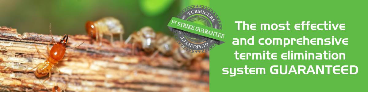 TermitesGuaranteed