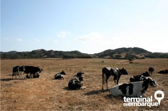 Paisagem do interior de Menorca