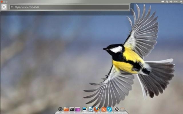 Ubuntu 13.04 - Personalizado com Tweak Tool e Cairo Dock