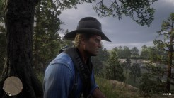 Red Dead Redemption 2_20181102150331