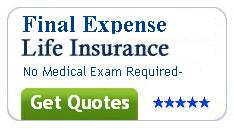 New york life term life insurance rates