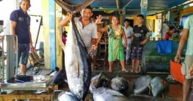 Melihat Cara Nelayan Bone Tangkap Tuna Raksasa