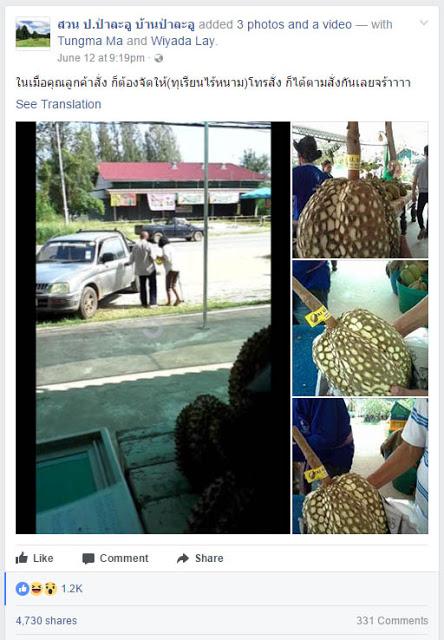 Viral Foto Durian Montong Ini Banyak Dicari Di Sosmed,Ini Alasanya