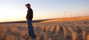 Walter Powell grows wheat near Condon and participates in a three-state study to develop varieties adapted to warmer, drier conditions. (Photo: Lynn Ketchum: OSU Extension and Experiment Station Communications)