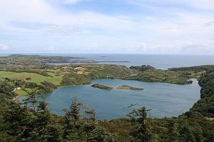 Lough Hyne in County Cork, Ireland, is home to plants and animals unique to the Emerald Isle.
