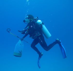 Undergraduate Allison Stringer collects samples in the Bahamas for a study on invasive lionfish. (Photo: Lillian Tuttle)