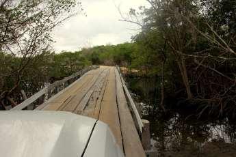 Pontes em meio aos manguezais