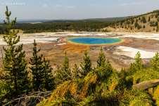 Estas intensas cores são explicadas pela grande concentração de bactérias termofílicas nas bordas da fonte
