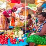 FineArt Guiné-Bissau