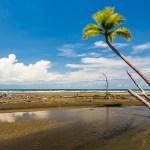 FineArt Costa Rica