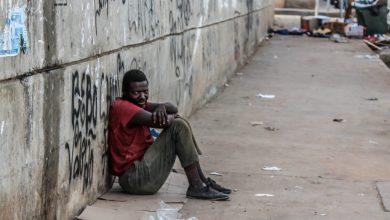 Photo of Economia experimental: seres humanos são cobaias?