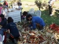 La festa per la raccolta del mais