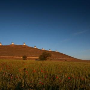 MOlinos de Consuegra, Toledo,La Mancha