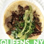 Taco Walking Tour in Queens, NYC || terragoes.com