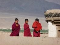 Ladakh 2009, 1 135