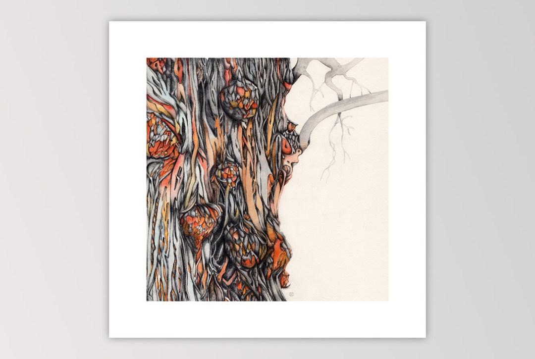 artwork-tree-galls-watercolor